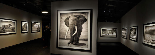Images Of Africa That Take Your Breath Away by Nick Brandt