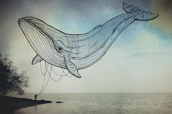 Oceanographies-03