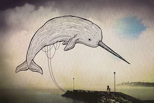 Oceanographies-08