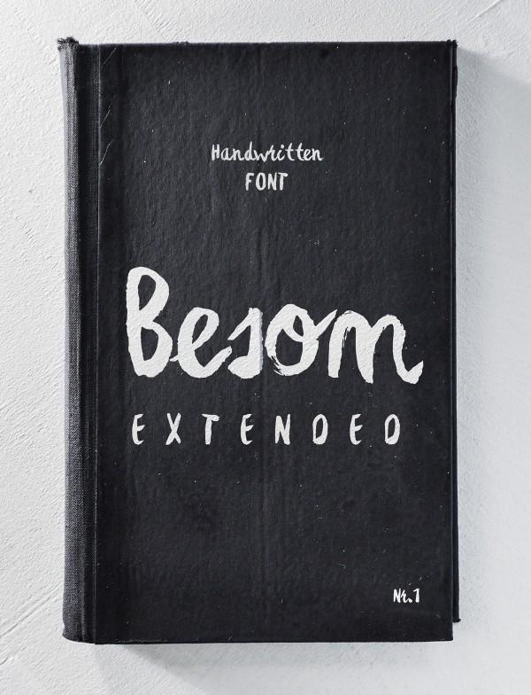 BESOM-EXTENDED-1b