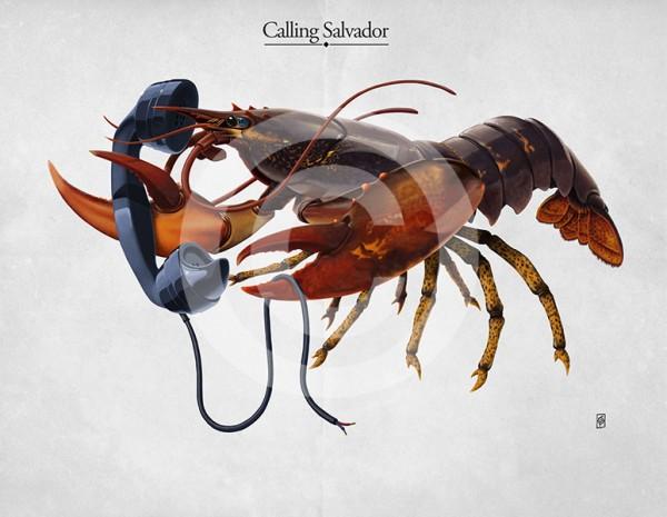 Calling Salvador © Rob Snow
