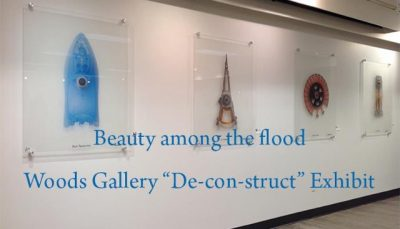 "Beauty among the flood Woods Gallery ""De-con-struct"" Exhibit"