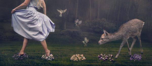 Where She Wanders